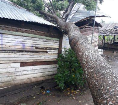 Algunos de los estragos huracán Irma