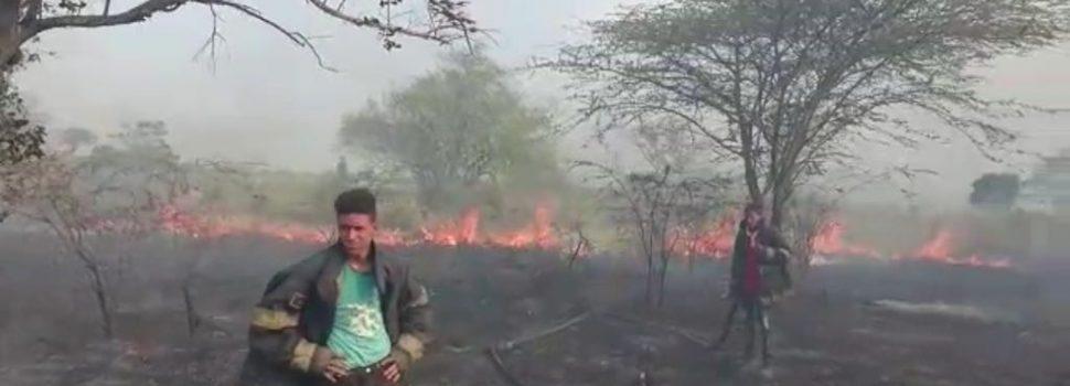 Fuego arrasa zona cordillera Central