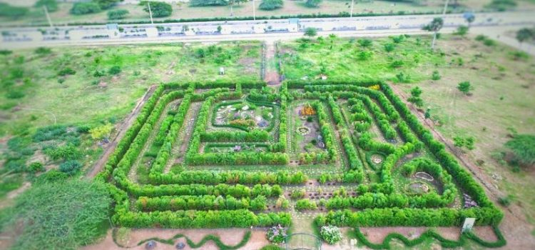 Anuncian la reapertura del Jardín Botánico de Santiago