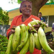 Inespre con plátanos a peso en diferentes lugares del país